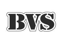 BOULONNERIES ET VISSERIES DE SABLE (BVS)